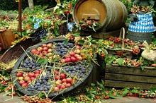 DESTINAȚII CU GUST Hunedoara: Zacusca de fructe - deliciul culinar al sfârșitului de toamnă