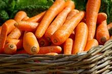 REȚETE VECHI DE 100 DE ANI: Găluști (bulete) de brânză proaspătă și Budincă de morcovi