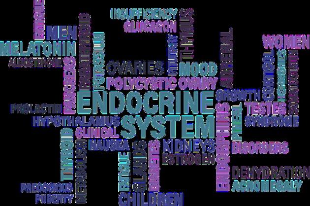 Dr. Elena-Iuliana Mihai despre creșterea ponderală și hipofuncția tiroidiană