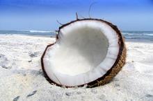 Uleiul de cocos scade colesterolul, arde grăsimea abdominală şi atenuează ridurile