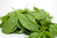 O porţie de legume cu frunze verzi pe zi îţi întinereşte creierul cu 11 ani